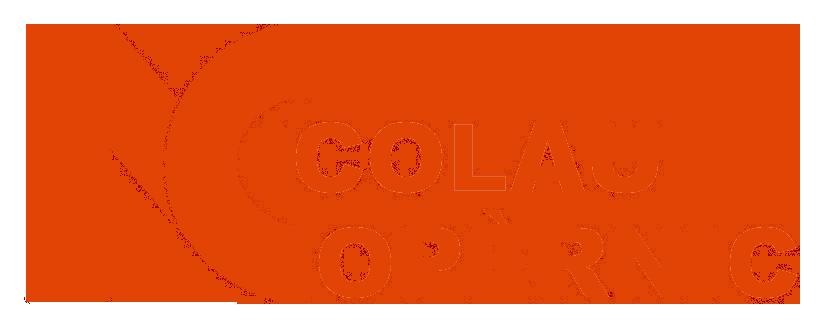 Logo Institut Nicolau Copèrnic